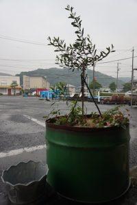 本日は雨降り…明日は広島のオフィスビルから搬出作業が…( ;∀;)
